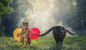Escapade en Indonésie : rencontre avec les ethnies